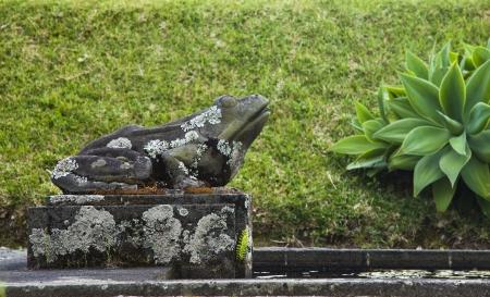 bassin jardin: �tang de jardin grenouille sculpture