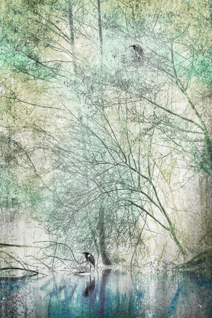 two herons sitting on a tree with texture and colors photo