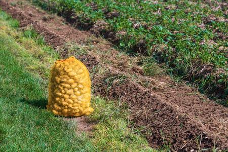 potatoe: potatoe bag lying beside a field Stock Photo