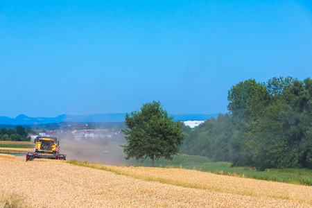 harvester: landscape with wheatfield and harvester Stock Photo