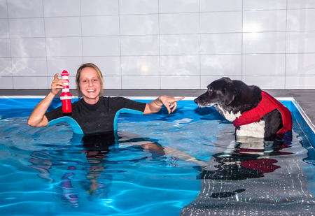 therapeutical: Therapist motivates dog in swimming pool