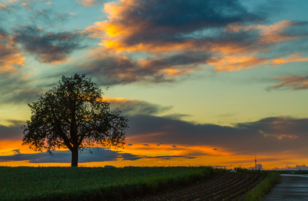 colorful sunset on the filder plains in germany