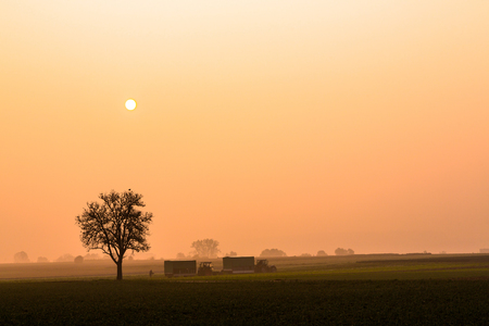 harvesting on a autumn morning with fog