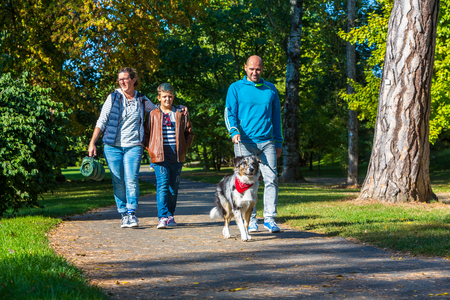 young family with child and dog at a walk in a park