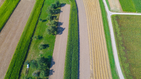 aerial view of fields and trees outdoors Standard-Bild - 116772737