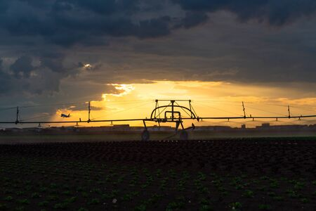 airport Stuttgart with sprinkler at sunset and a starting plane