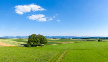 view to the swabian alb and some big trees near Suttgart in Germany- aerial
