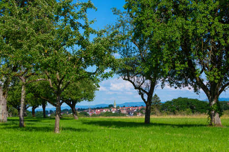 rural village Stuttgart Plieningen seen from an apple orchard near by