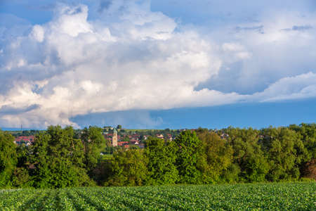 rural village in Germany with salat field in front of church tower Stock fotó