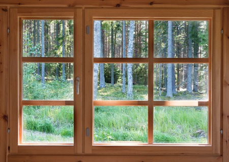 Green sunny view of summer woods in the wooden country window