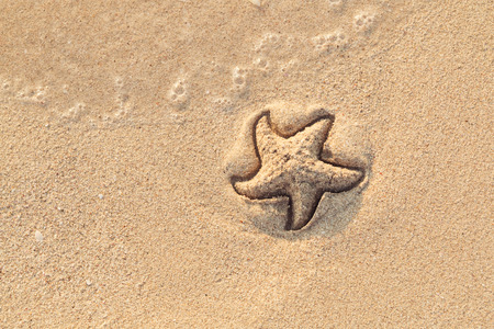 Starfish drawn on the beach sand being washed away by a wave. Foaming sea wave coming to wash a picture on wet yellow beach sand. Holiday and vocation message. View from above. Copy space. Banque d'images