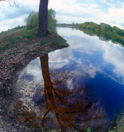 The blue sky and tree reflected in water. Desna river, Ukraine.
