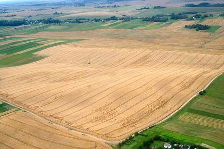 Meadows and fields. Aerial image. Rivne region, Ukraine. Stock Photo