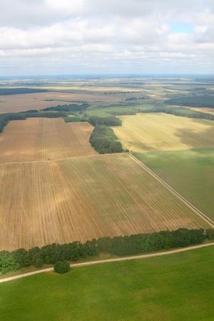 수확. 공중 이미지입니다. Rivne 지역, 우크라이나. 스톡 콘텐츠