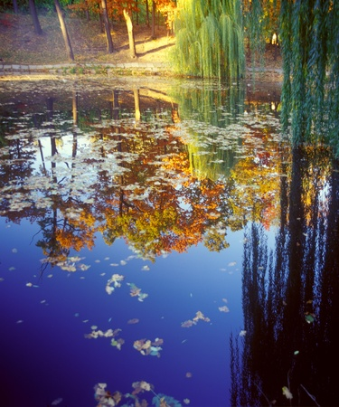 Autumn colors reflecting on the pond. High resolution image. photo
