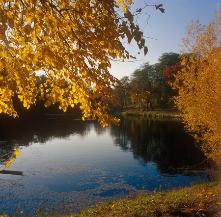 Autumn foliage reflecting on a small pond. High resolution image. Stock Photo - 10117770