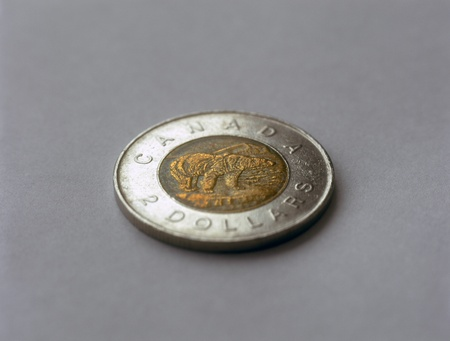 Canadian two dollar coin on gray background. photo