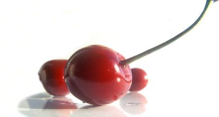 Fresh organic red sweet cherries, taken a fisheye lens. Selective focus. Isolated on white. Stock Photo - 16221303