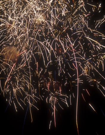 Bright firework display against a black sky. Useful as background.