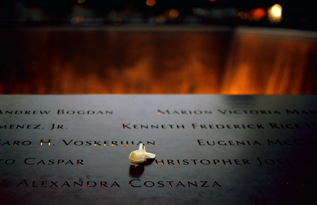 tribute: New York City, USA - June 24, 2014  9 11 Memorial at Ground Zero, Lower Manhattan, commemorating the terrorist attack of September 11, 2001  Flowers near the names of victims engraved in the bronze parapet