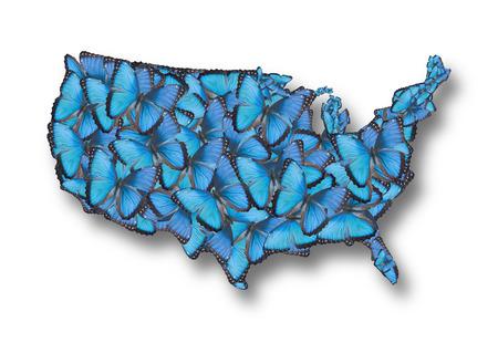 morpho: Map of the USA of blue butterflies Morpho peleides.