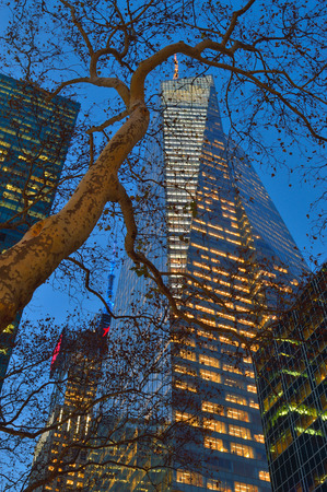 bryant: A night view of the Bank Of America Tower through the branches of Bryant Park trees. Editorial