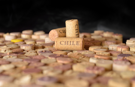 sauvignon blanc: Wine-producing countries. Chiles name on wine corks. Stock Photo