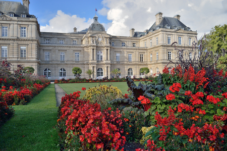 Flowers in front of the Luxembourg Palace in Jardin du Luxembourg - focus on the flowers.
