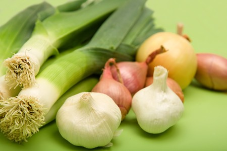 Onion, Garlic, Shallot, and Leek on Green Stock Photo - 4528040