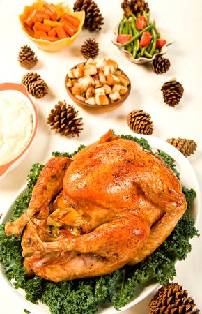 roast turkey: Delicious Turkey with dressing, vegetables and gravy Stock Photo