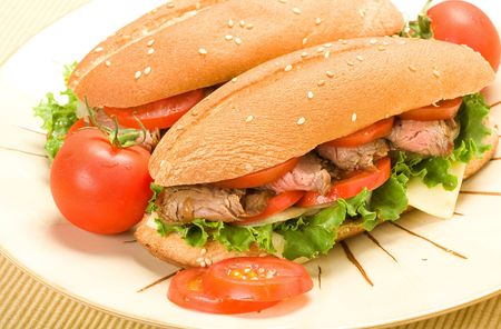 Sliced steak on submarine roll with lettuce, tomato, onion, and peppers Stock Photo - 5454330
