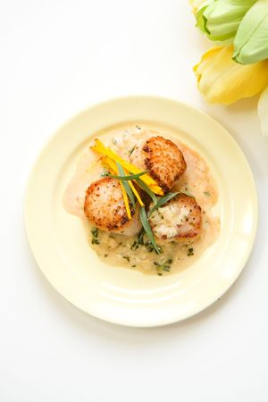 shoestring: Scallops in tarragon cream sauce accompanied by shoestring beets and tarragon leaf