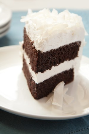 Chocolate cake with white icing an dlarge shredded coconut photo