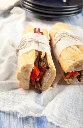 Tasty grilled vegetarian submarine sandwich with portobello mushroom, peppers, onions, zucchini and tomato Stock Photo - 9937196