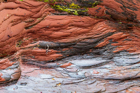 Pattern and texture of the layers of colorful red or black sandstone rock on Cavendish beach of Prince Edward Island, and covered in debris from the ocean currents.