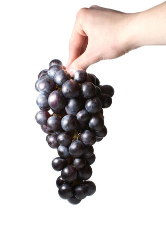 Sweet tasty grapes in a hand of somebody isolated on white    photo