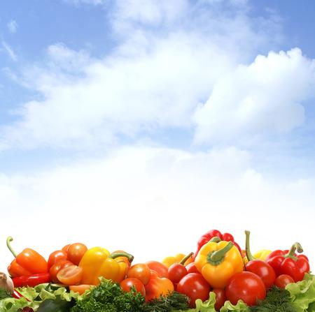 verduras: Diferentes sabrosas hortalizas frescas aisladas en fondo blanco