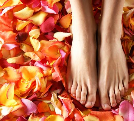 pies sexis: Composiciones Spa de piernas femeninas sexy y Planty de diferentes pétalos Foto de archivo