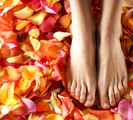 feet in water: Spa compositions of sexy female legs and planty of different petals Stock Photo