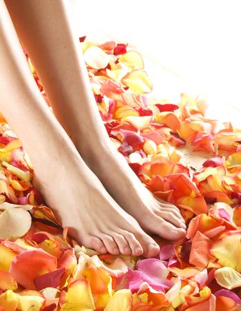pies sexis: Piernas hermosas con los pétalos de la flor Foto de archivo
