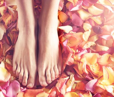 wood rose: Beautiful female legs over spa background. Stock Photo