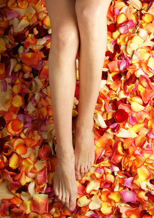 feet in water: Colorful background made of beautiful female legs and petals