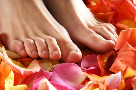 spa therapy: Spa compositions of sexy female legs and planty of different petals Stock Photo