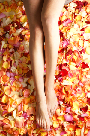 beautiful legs: Spa composition of legs and petals