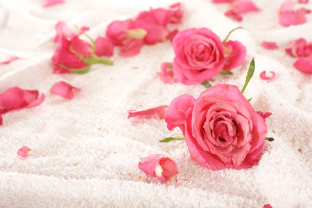 bath essence: Roses over towel (some areas may not be in focus)