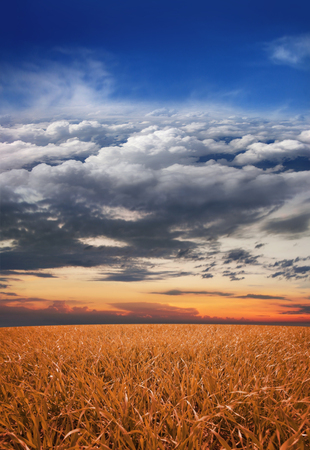 clouds scape: Collage: meadow, sunset, sky, clouds, stratosphere and space in one image