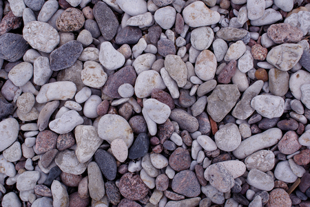 rigid: Texture made of small beach stones