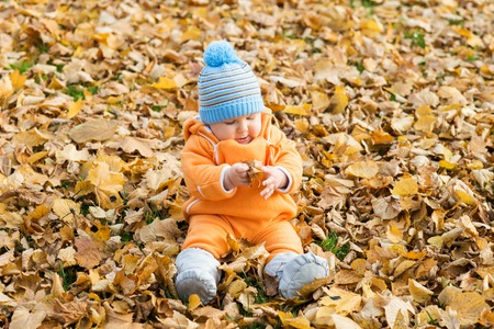 Toddler baby playing in autumn park. Stock Photo