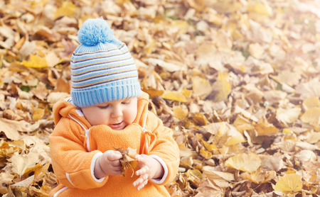Happy toddler baby playing with leaves in autumn park. Stock Photo