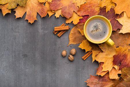 Seasonal autumn background. Frame of colorful maple leaves.